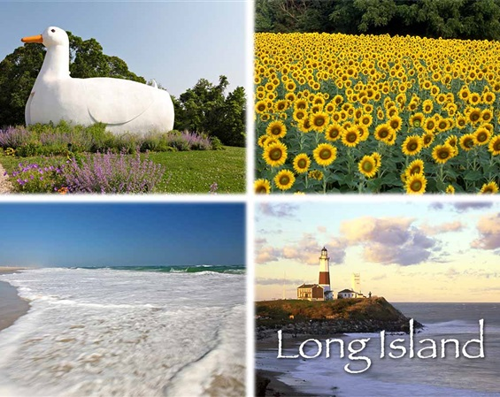 Long Island Multiview Magnet #1