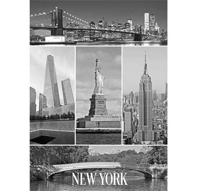 New York Multiview Magnet #11